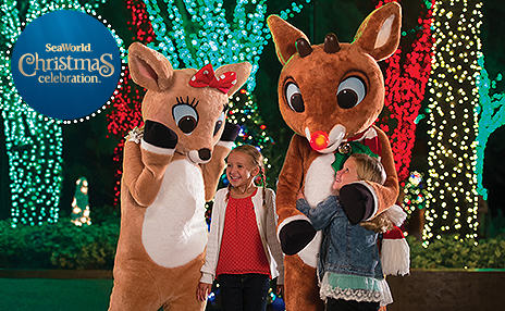 A girl deer (left) and Rudolph the Red Nose Reindeer (right) look down at two little girls, one looking up at the female deer and the other looking up and hugging Rudolph. Background features white, red, and green holiday lights that cover the trunks of trees. Logo on the top left shows SeaWorld Christmas Celebration. Nighttime shot.